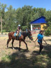 Польза конных прогулок