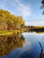 Осень в Лесной сказке